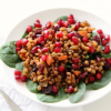 Thumbnail image for Spinach Spelt Salad with Cranberries and Carrots for #TheSaladBar