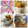 Thumbnail image for Succulent School: Growing Succulents in Unusual Containers