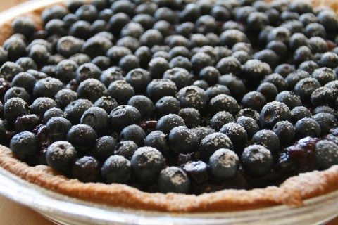 Dorothy's Fresh Blueberry Pie on Shockingly Delicious
