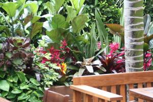 Patio at Cafe Habana at The Malibu Lumber Yard