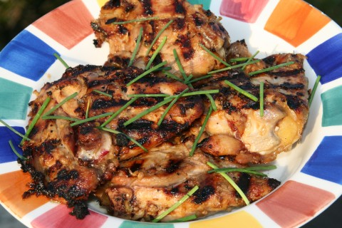 Grilled Lemongrass Ginger Chicken on Shockingly Delicious