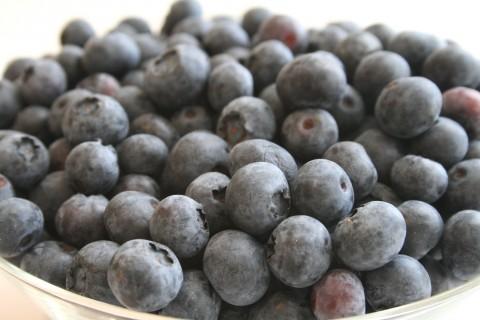 Fresh Blueberry Sauce