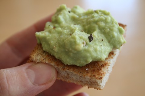 Avocado on Toast with Truffle Salt on Shockingly Delicious