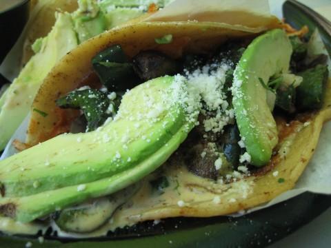 Rubios Grilled Portobello Poblano Gourmet Taco from Shockinglydelicious.com