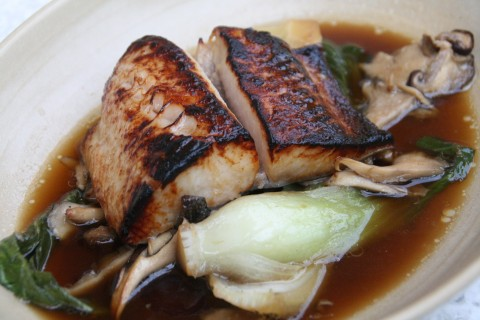 Miso Glazed Black Cod at True Food Kitchen on Shockinglydelicious
