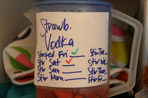 Strawberry-Infused Vodka