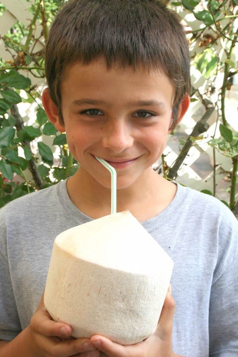 Sweet Young Coconut