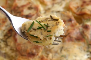 Bite of Garlic and Herb Potato Gratin