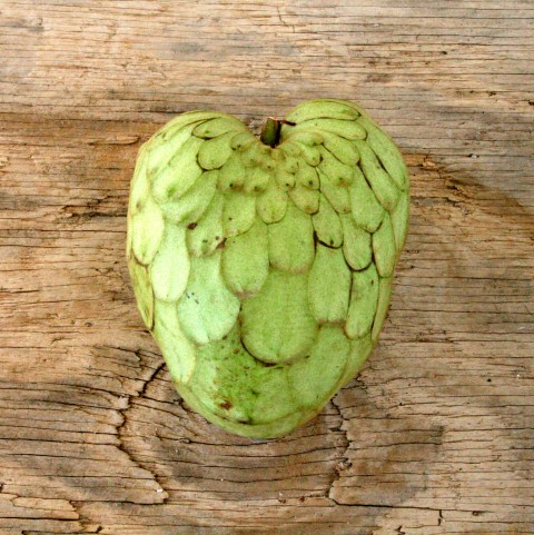 Heart-Shaped Cherimoya Fruit for Valentine's Day