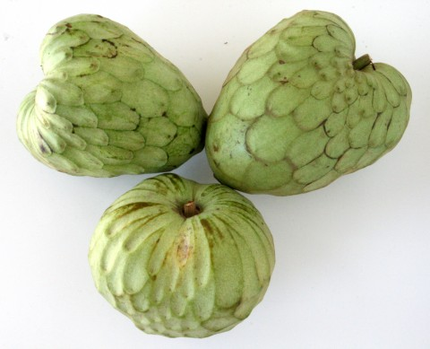 Cherimoya Fruit -- Nature's Ice Cream
