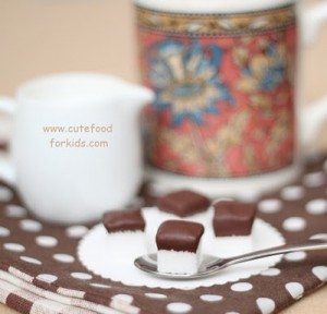 Chocolate Dipped Sugar Cubes