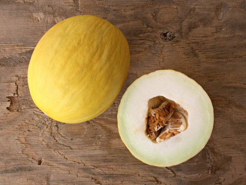 Gold Canary Melon