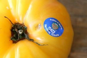 heirloom tomato from Mexico