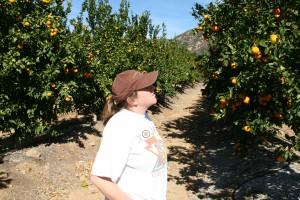 Pixie Tangerine tour Emily Ayala