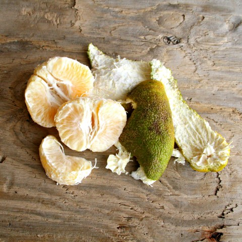 Ugli Fruit or Uniq Fruit