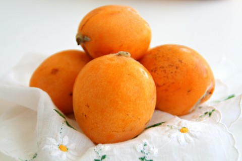Introducing Loquats