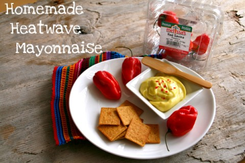 Homemade Heatwave Mayonnaise
