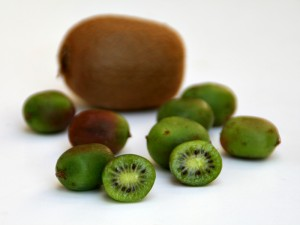 Baby Kiwi from Melissa's on ShockinglyDelicious.com
