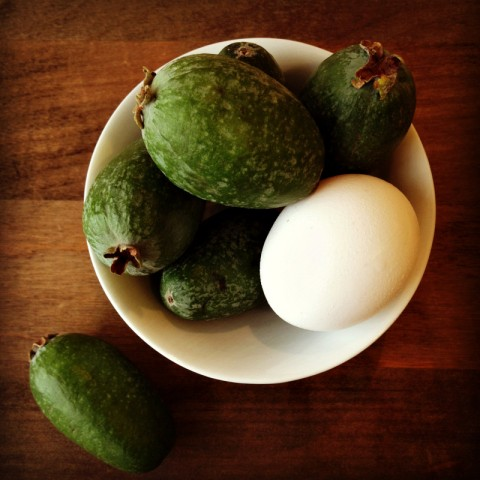 Introducing Feijoas -- Pineapple Guava