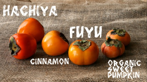 4 Persimmon Varieties: http://www.shockinglydelicious.com/?p=10539