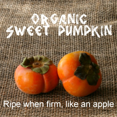 Organic Sweet Pumpkin Persimmon: https://www.shockinglydelicious.com/?p=10539