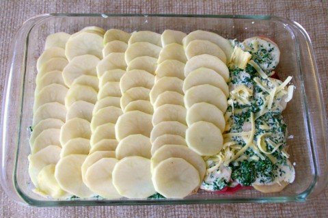 Layering potatoes for Spinach Gruyere Potato Gratin. Recipe here: https://www.shockinglydelicious.com/?p=10960