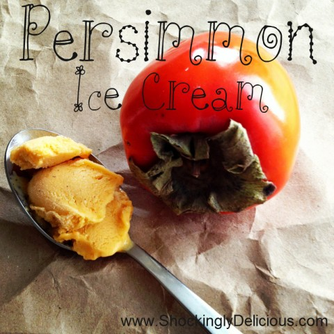 Persimmon Ice Cream on Shockingly Delicious. Recipe here: https://www.shockinglydelicious.com/?p=10857