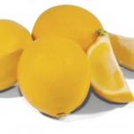 Meyer Lemons from Friedas