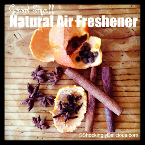Natural Air Freshener on Shockingly Delicious, Recipe here: https://www.shockinglydelicious.com/?p=11756