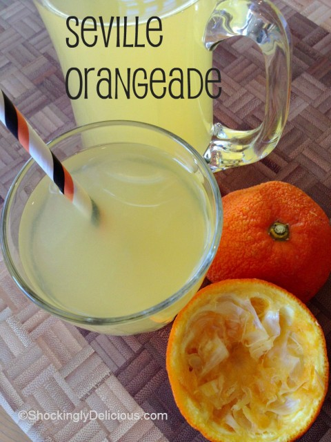 Seville Orangeade on Shockingly Delicious