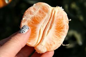 Sumo Citrus in hand on Shockingly Delicious