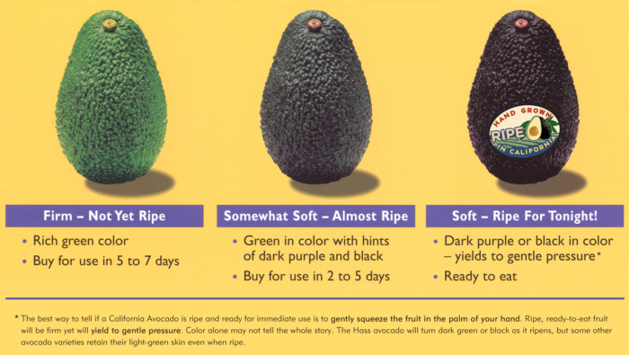Stages Of Ripeness From Calif Avocado Commission On Shockingly Delicious