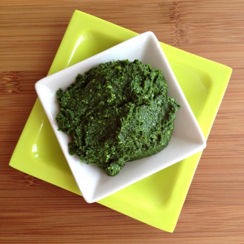 Kale Pesto on Shockingly Delicious