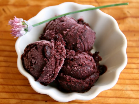 Fresh Blackberry Elderflower Sorbet is crazy deep purple in color, delightfully berrylicious in flavor with a light hint of an indescribable floral background from the St. Germain Liqueur (elderflower liqueur). Mother's Day?  | ShockinglyDelicious.com