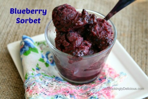 Blueberry Sorbet on Shockingly Delicious