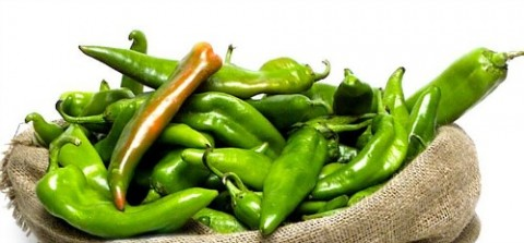 40 best recipes for Hatch chiles on Shockingly Delicious