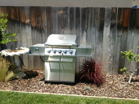 Stefan Richter's backyard barbecue on Shockingly Delicious