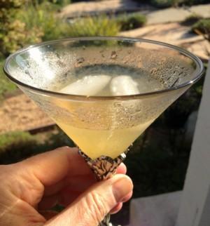 Vanilla Margarita on Shockingly Delicious