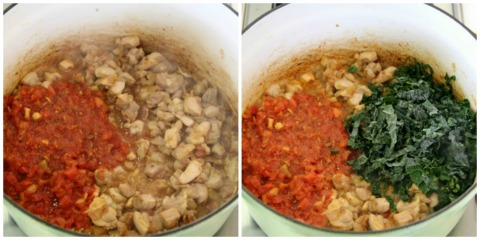 Spicy Smoky Chicken Kale Stew on Shockingly Delicious