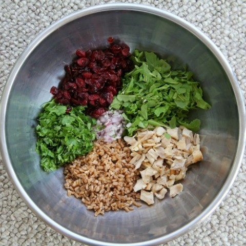 Farro Chicken Cranberry Arugula Grain Salad on Shockingly Delicious