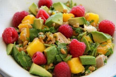 Cilantro Chicken Salad with Farro and Mango on Shockingly Delicious