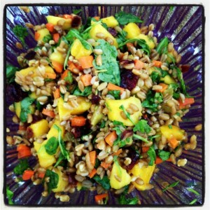 Confetti Farro Salad on Shockingly Delicious