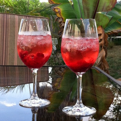 Jaw Droppingly Good Cranberry Mimosa on the blog Shockingly Delicious