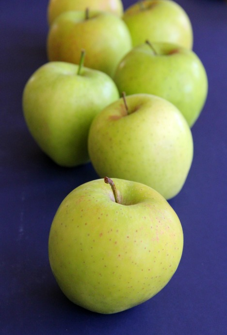 Super sweet Green Dragon Apples are available nationally -- worth finding! Taste: perfumed Green Delicious crossed with a pear, only better!