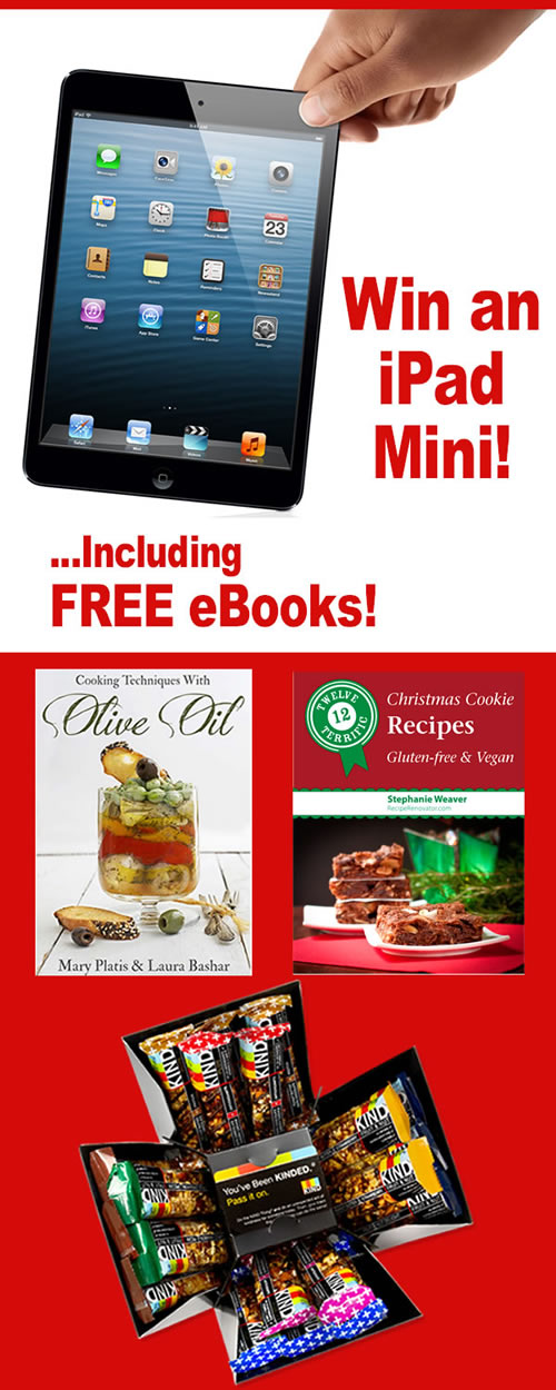 iPad Mini #Giveaway Dec. 1-16 -- www.ShockinglyDelicious.com
