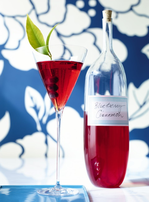 Blueberry Cinnamon Liqueur | www.ShockinglyDelicious.com