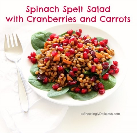 Spinach Spelt Salad with Cranberries and Carrots   www.ShockinglyDelicious.com
