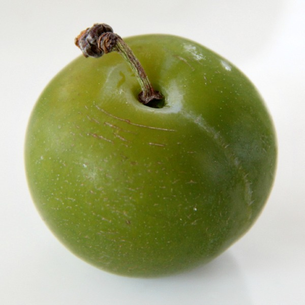 Greengage Plums | www.ShockinglyDelicious.com