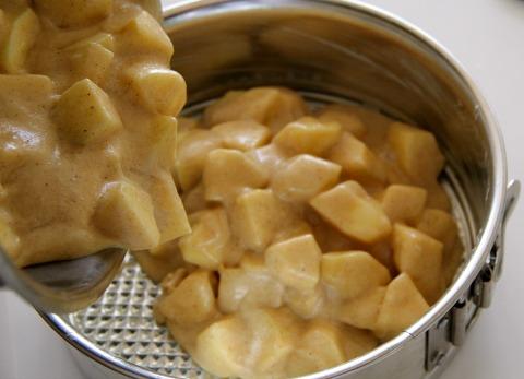 The Ultimate Apple Spice Cake   www.ShockinglyDelicious.com