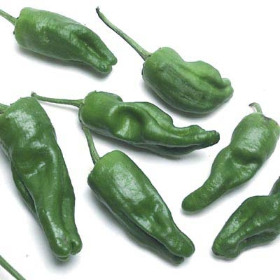 Padron chiles from Melissas Produce on Shockingly Delicious